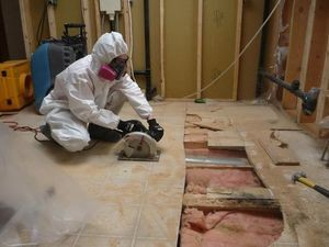 A Technician Restoring A Floor In A Flooded Basement