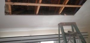 Mold Growth Removal On Ceiling