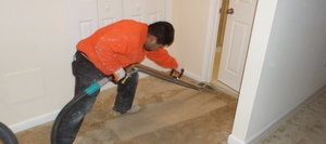Water Damage Restoration Expert Cleaning Carpet After Office Flooding